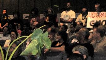 hoopau GMO - quit GMO - protect taro