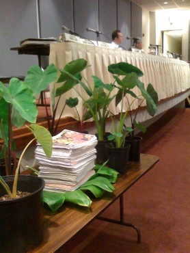 6,000 people testify in support of GMO-free taro