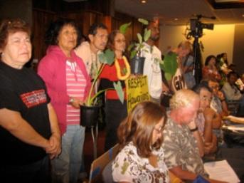 Respect Hawaiians - No GMO Kalo