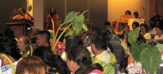 """Uncle Walter testifying in support of GMO-free taro to a """"lo'i"""" audience"""