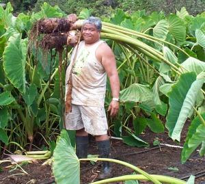 jerry-w-kalo-crop
